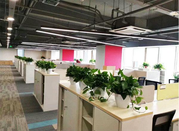 老客户新项目静安区王总公司300㎡办公室永利棋牌游戏大厅
